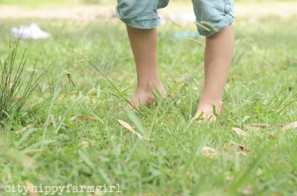 grass- cityhippyfarmgirl