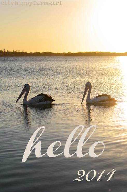 hello 2014- cityhippyfarmgirl