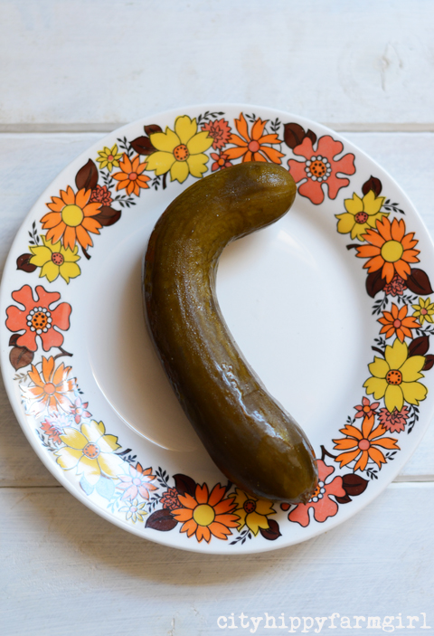 pickle- cityhippyfarmgirl