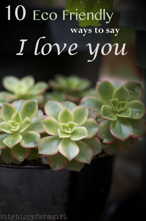 10 eco friendly ways to say I love you || cityhippyfarmgirl