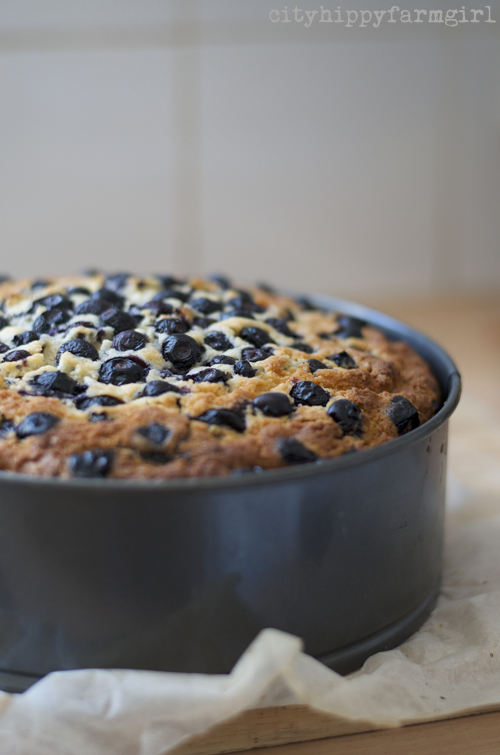 blueberry cake recipe || cityhippyfarmgirl