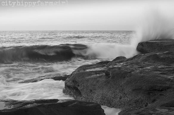 cityh and the sea || cityhippyfarmgirl