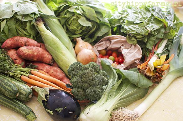 ooooby vegetables || cityhippyfarmgirl