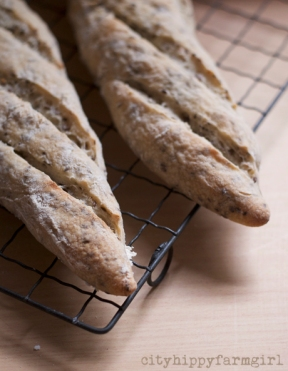 sourdough baguettes || cityhippyfarmgirl