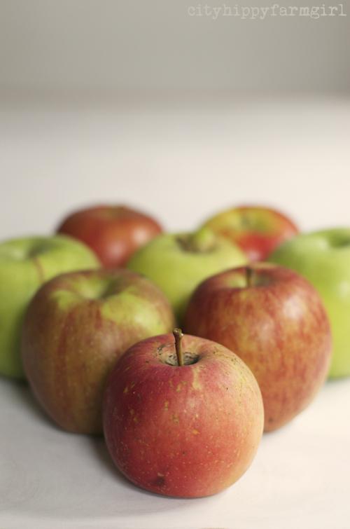 apples || cityhippyfarmgirl