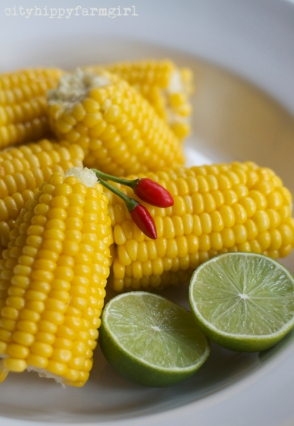 corn and chilli || cityhippyfarmgirl