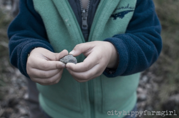 rock collecting || cityhippyfarmgirl