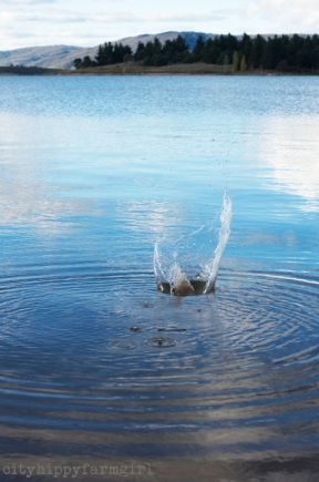 splash || cityhippyfarmgirl