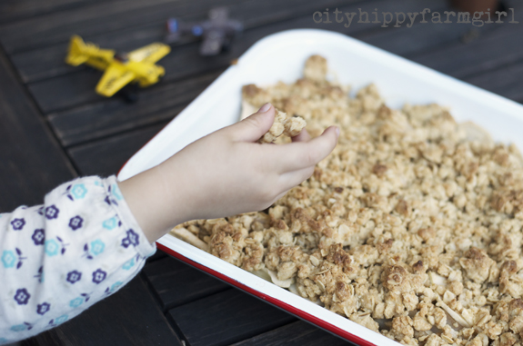 apple crumble || cityhippyfarmgirl