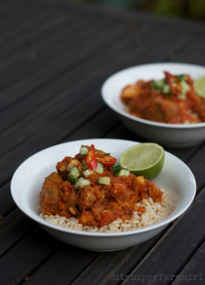 goat curry- Eat Local Challenge || cityhippyfarmgirl