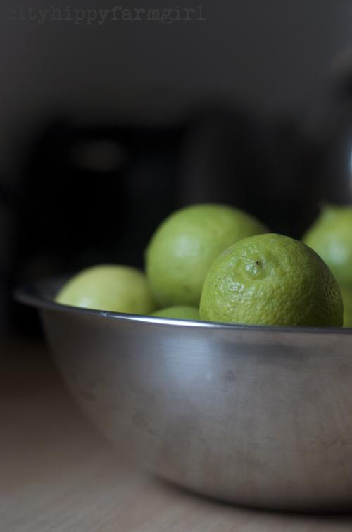 lime marmalade || cityhippyfarmgirl