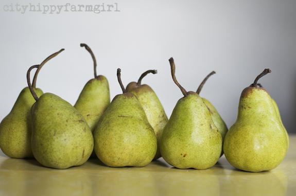 pears || cityhippyfarmgirl