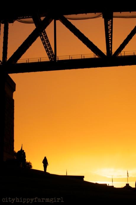 sunset Sydney Harbour || cityhippyfarmgirl