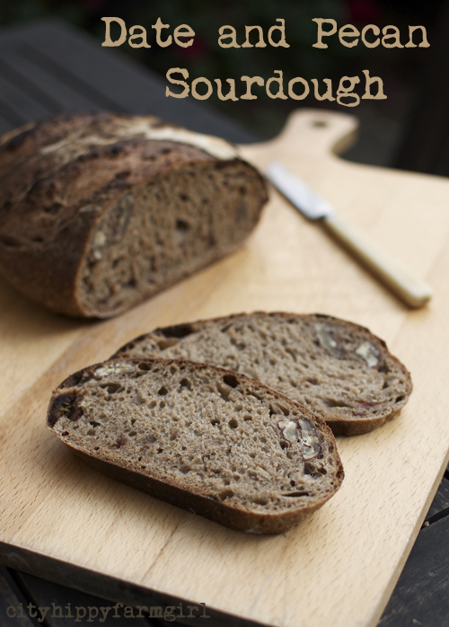 date and pecan sourdough recipe|| cityhippyfarmgirl