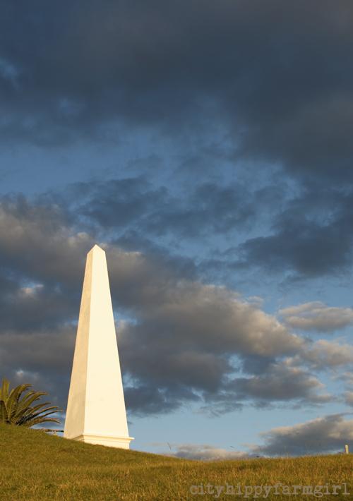 Newcastle obelisk || cityhippyfarmgirl