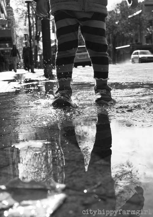 splashes || cityhippyfarmgirl