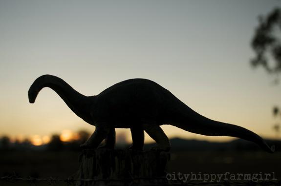 dinosaurs at dusk || cityhippyfarmgirl