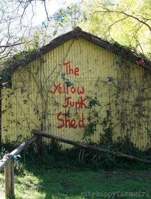 yellow junk shed || cityhippyfarmgirl