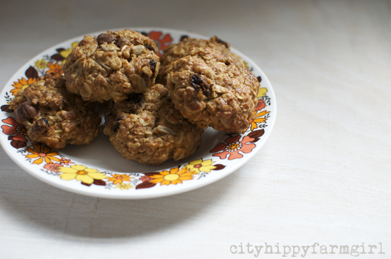 a little snack biscuits || cityhippyfarmgirl