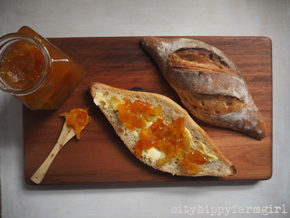 cumquat marmalade || cityhippyfarmgirl