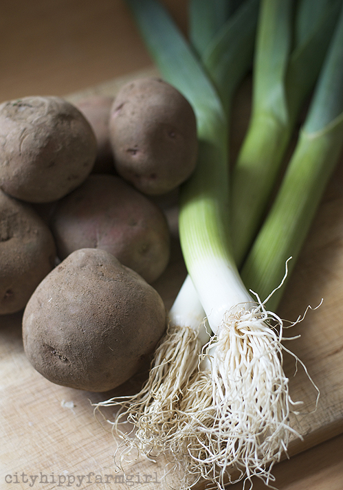 leek and potatoes || cityhippyfarmgirl