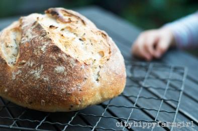 simple sourdough recipes || cityhippyfarmgirl