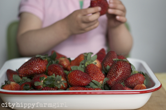 strawberries || cityhippyfarmgirl