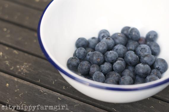 blueberries || cityhippyfarmgirl