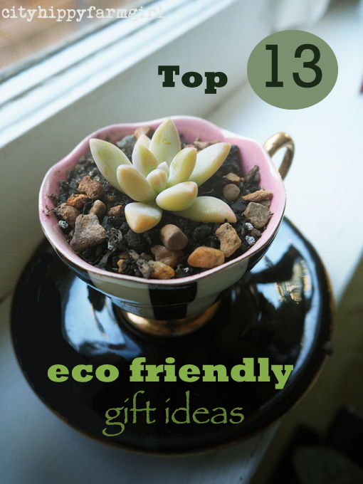 Top 13 Eco Friendly Gift Ideas || cityhippyfarmgirl