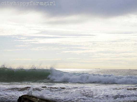sea scenes || cityhippyfarmgirl
