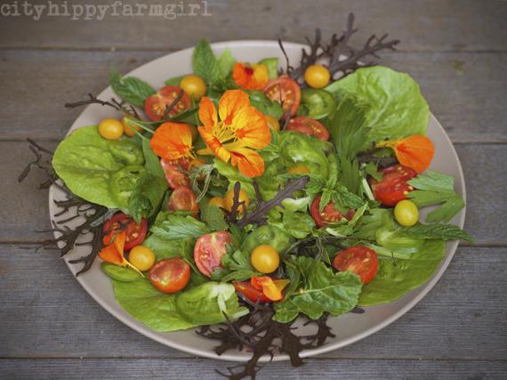 garden salad || cityhippyfarmgirl