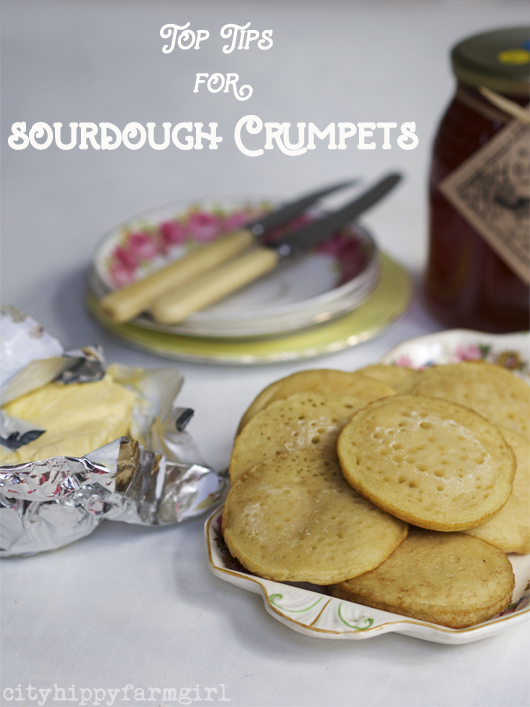 Top tips for Sourdough Crumpets || cityhippyfarmgirl