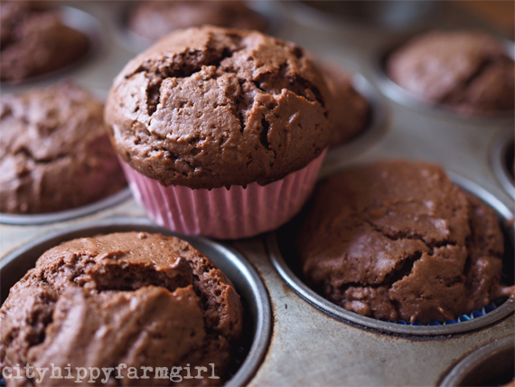 best ever chocolate muffins || cityhippyfarmgirl