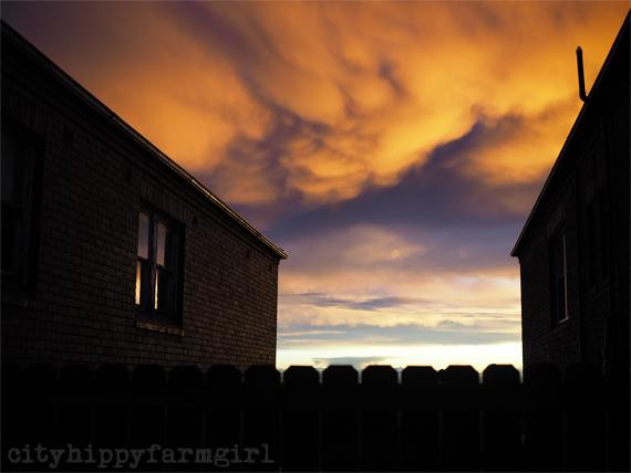domestic sunset || cityhippyfarmgirl