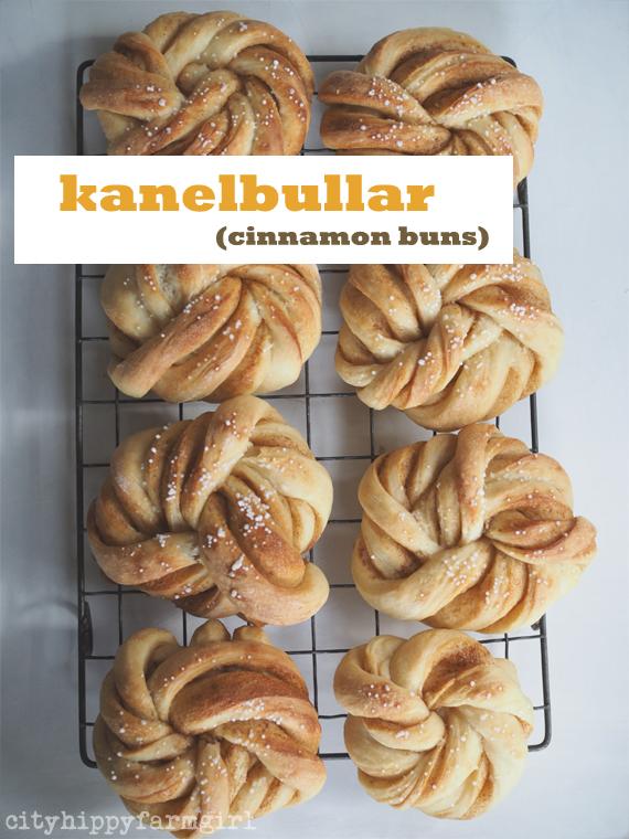 kanelbullar or cinnamon buns || cityhippyfarmgirl