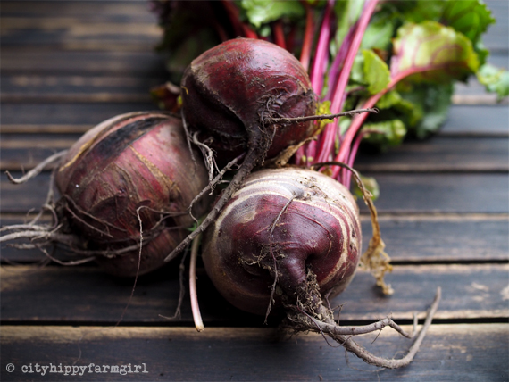 seasonal beetroot || cityhippyfarmgirl