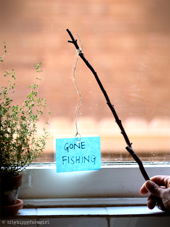 gone fishing || cityhippyfarmgirl