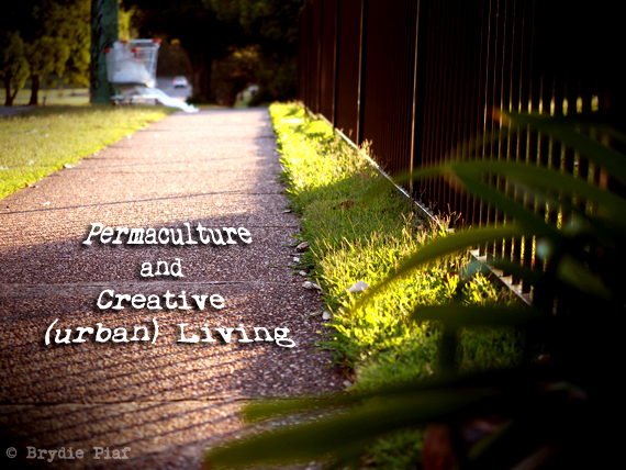 permaculture and creative urban living