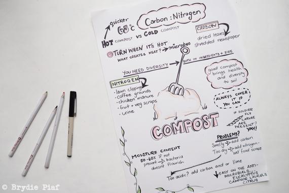 compost 101 || cityhippyfarmgirl