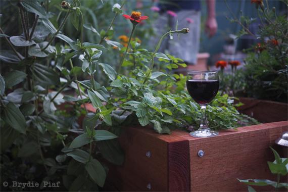 permaculture garden || cityhippyfarmgirl