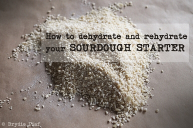 how to dehydrate and rehydrate your sourdough starter || cityhippyfarmgirl