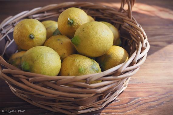 simple lemon and olive oil cake || cityhippyfarmgirl