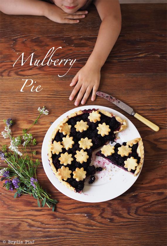 mulberry pie || cityhippyfarmgirl