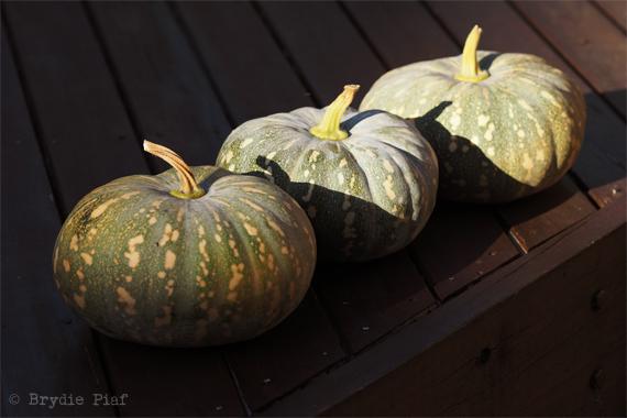 pumpkins-cityhippyfarmgirl